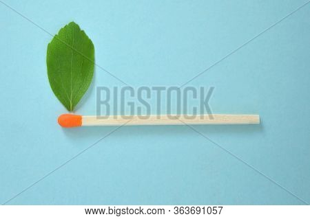 Conceptual Match With Green Leaf Like A Flame