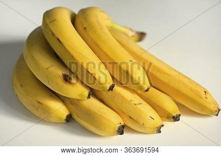 Bunch Of Raw Ripe Organic Yellow Bananas