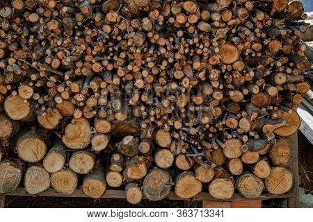 Woodpile Of Cut Firewood Logs And Branches. Traditional Rural Fuel Concept. Rough Wooden Textures Of