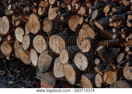 Side View Of Woodpile Of Cut Firewood Logs And Branches. Rustic Fuel Concept. Rough Wooden Textures