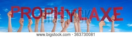 People Hands Holding Word Prophylaxe Means Prophylaxis, Blue Sky