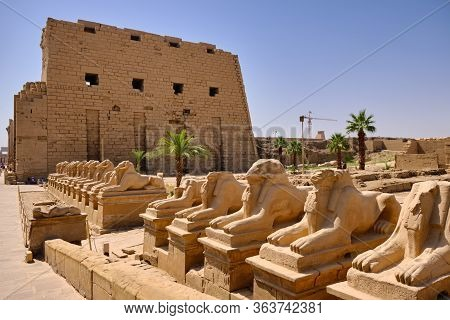 Granite Statues Of Amun In The Form Of A Ram In The Avenue Of Sphinxes At The Entrance Of Karnak Tem