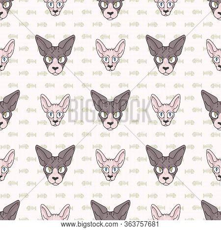 Cute Cartoon Sphynx Kitten And Cat Face Seamless Vector Pattern. Pedigree Exotic Kitty Breed Domesti