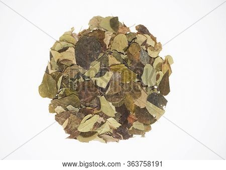 Close Up Shot Selective Focus Of Moringa Oleifera Is Drumstick Dried Leaves Used As Herb In South As