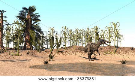suchomimis dinosaur on shore