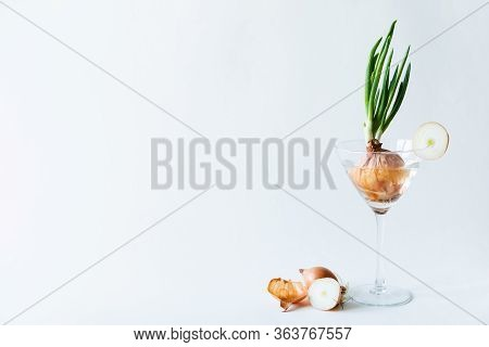 Green Onion Growing In A Stemmed Cocktail Glass On White Background.