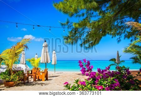 Small Palm Tree Flowers And Closed Parasols On A Empty Seven Mile Beach During Confinement, Cayman I