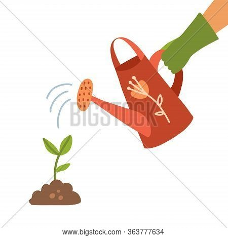 Watering Can Holding In Hand. Man Watering Sproutwith A Watering Can. Drops Of Water Falling. Human
