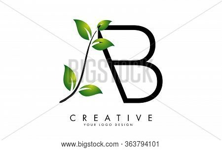 Leaf Letters Ab A B Logo Design With Green Leaves On A Branch. Letters Ab With Nature Concept. Eco A