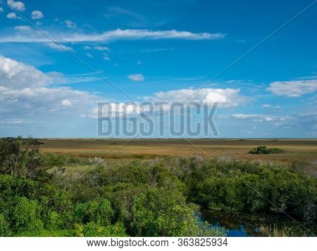 Everglades Landscape Showing A Pond, Saw Grass, Trees, And A Brilliant Blue Sky With Clouds In Everg