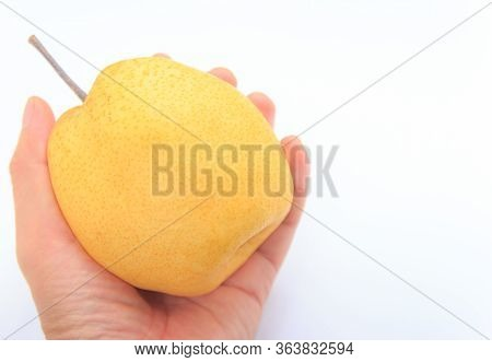 A Barrow Fruit On The Hand Isolated On White Background.