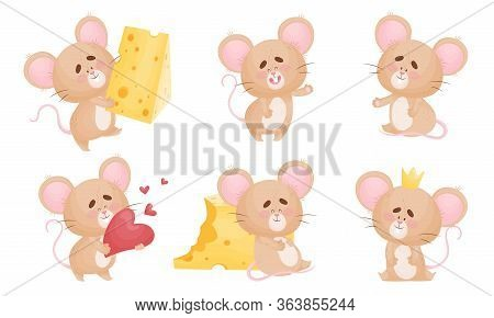 Cartoon Mouse With Big Ears And Long Tail Wearing Crown And Holding Slab Of Cheese Vector Set