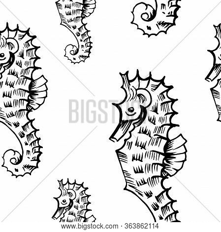 Seahorse Sketch Pattern. Hand Drawn Black Seahorses On Transparent Background. Seamless Vector Backd