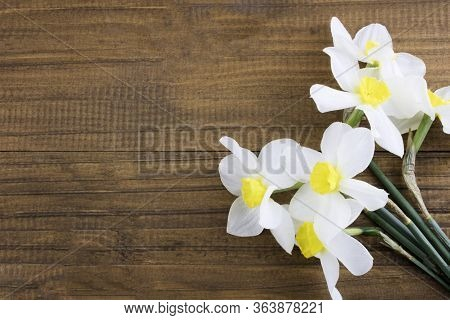 Fresh White Daffodils Isolated On A Wooden Background. Bouquet Of Daffodils. Spring Flowers. Banner.