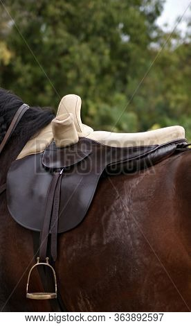 Sidesaddle Riding Is A Form Of Equestrianism That Uses A Type Of Saddle Which Allows A Rider (usuall