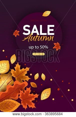 Autumn sale vector background. Autumn sale and discount text in autumn space with maple leaves in white textured background for fall season marketing promotion. Vector autumn illustration Vertical view.