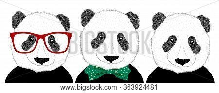Hand Drawn Illustration Of The Head Of A Panda With Glasses And A Panda In A Tie, Set. Isolated Cute