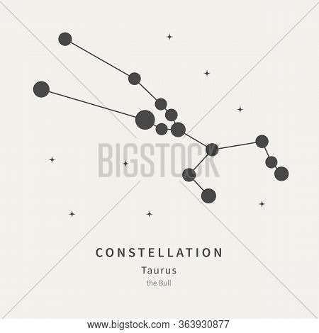 The Constellation Of Taurus. The Bull - Linear Icon. Vector Illustration Of The Concept Of Astronomy