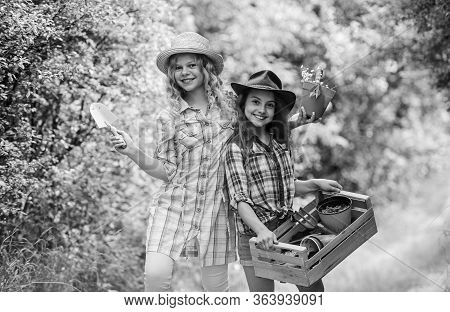 Planting Vegetables. Summer Activity. Sisters Cute Kids Helping At Farm. Agriculture Concept. Girls