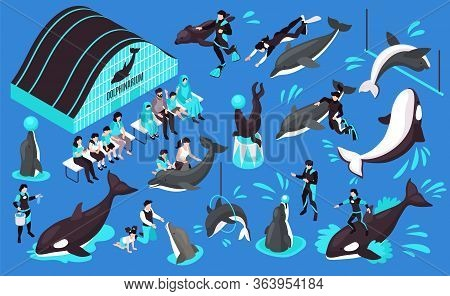 Dolphinarium Isometric Set Of Animal Trainers Dolphin Orca Performing In Public And Spectators Isola