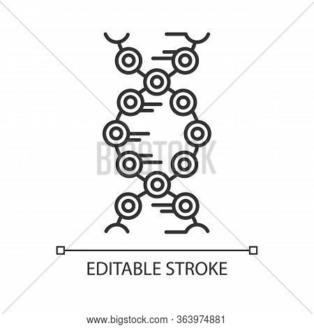 Dna Strands Linear Icon. Connected Circles, Lines. Deoxyribonucleic, Nucleic Acid Helix. Chromosome.