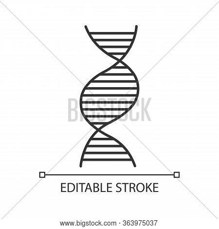 Right-handed Dna Helix Linear Icon. B-dna. Deoxyribonucleic, Nucleic Acid. Molecular Biology. Geneti