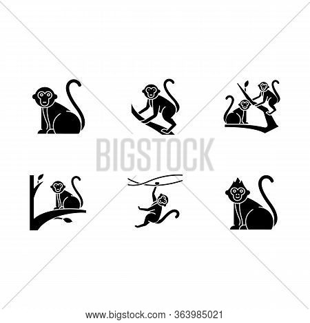 Monkeys In Wild Glyph Icons Set. Tropical Animals On Trees. Exploring Exotic Indonesian Wildlife. Pr