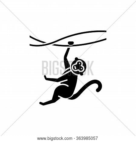 Monkey On Liana Glyph Icon. Tropical Country Animal, Mammal. Exploring Exotic Indonesian Wildlife. P