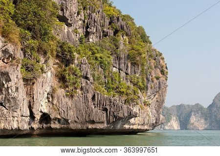 Limestone Karst Rock Covered With Green Trees In Lan Ha Bay Near Cat Ba Island In Vietnam