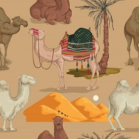 Seamless Pattern With Camels In Different Poses, Sand Dune Of Desert And Palm Tree. Vector Illustrat