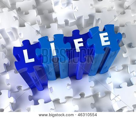 Creative 3D pieces of puzzle and word Life