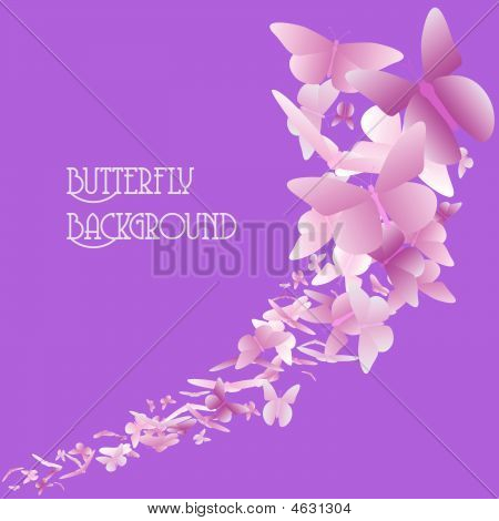 Butterfly Background Pink