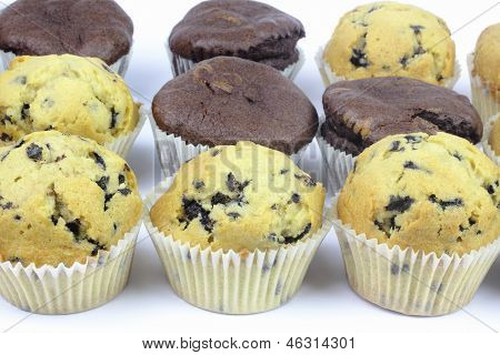 Close up of muffins on the white background