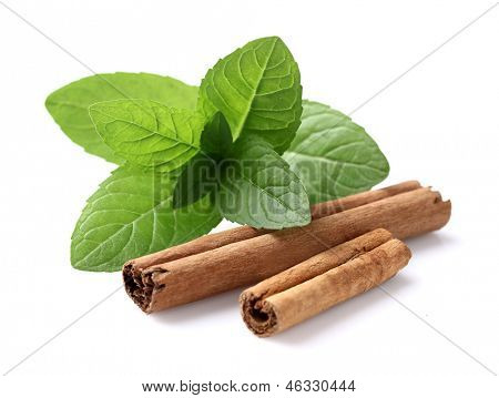 Mint with cinnamon on a white background