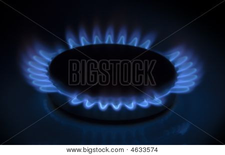 Gas Burner. Isolated View Of Gas Burner Flame