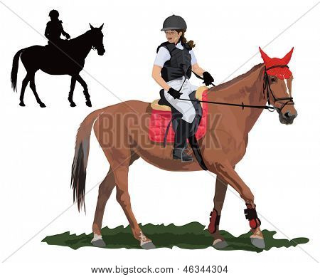 Brown race horse and lady jockey in uniform. Detailed color vector illustration.