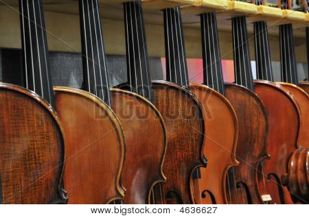 8 Violins Hanging In Rack