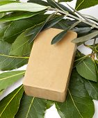 Aleppo soap and laurel on white background poster