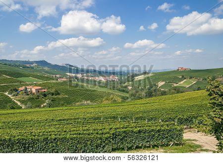 Barolo and La Morra near Asti in Piedmont,Italy