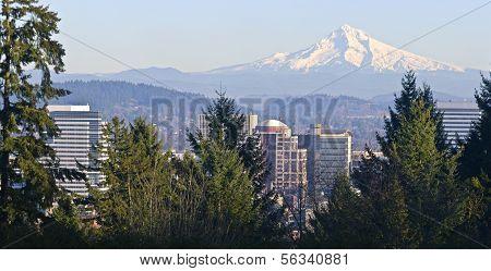 Mt. Hood Panorama And Downtown Portland Oregon