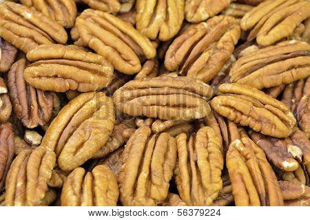pecan nut
