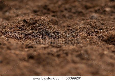 Close up of soil - can be used as background poster