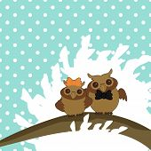 two nice owls on tree brunch vector illustration poster