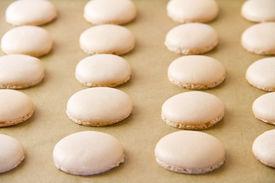 Macaron Shells On Baking Sheet