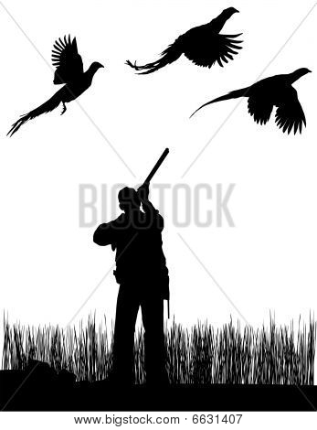 Pheasant Bird Hunter