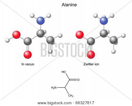 Alanine (Ala) - Chemical Structural Formula And Models