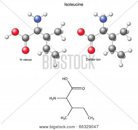 Isoleucine (Ile) - chemical structural formula and models, amino acid, in vacuo, zwitterion, 2D and 3D illustration, balls and sticks, isolated on white background, vector, eps8 poster