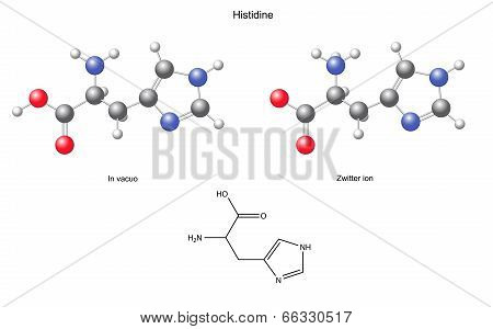 Histidine (his) - Chemical Structural Formula And Models