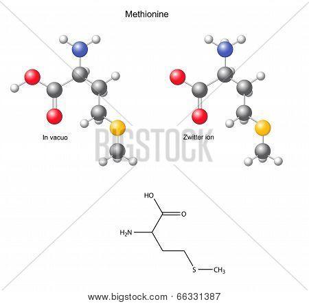 Methionine (met) - Chemical Structural Formula And Models