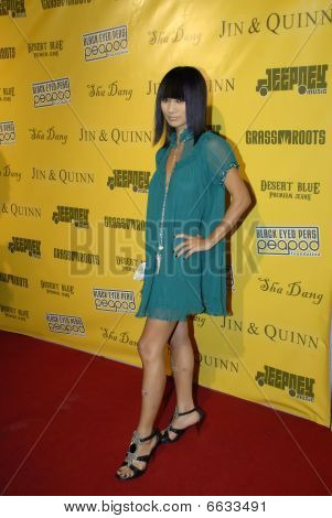 Bai Ling on the red carpet.